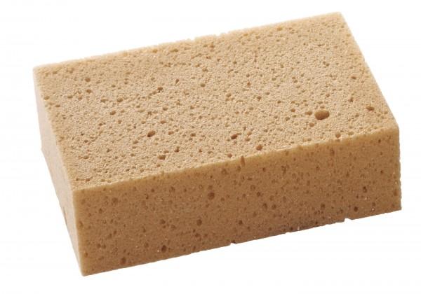 Sponge, fine pored