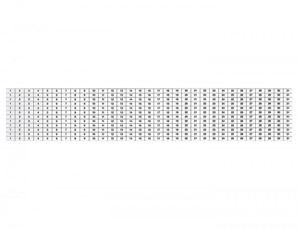 Magnethaftende Kalenderstreifen zum Nachbestellen, 12 Stück (für 37365)